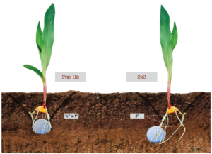 Studies show yields can be influenced by accuracy in planting depth.
