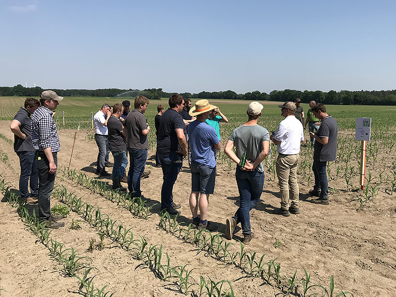 Growers view corn plots at the first European AGCO Crop Tour event in 2019, hosted by AGRAVIS in Uelzen, Germany.